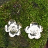 Dog rose earrings