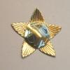 Military star brooch