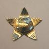 military star brooch 2